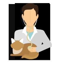 Clay for Veterinary
